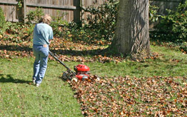 Lawnmowing-leaves