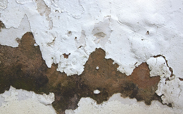 Peeling paint on external wall