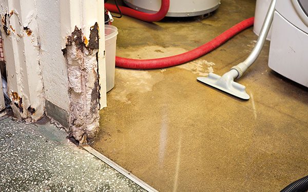 What Kind Of Damp Is Affecting My Home Which