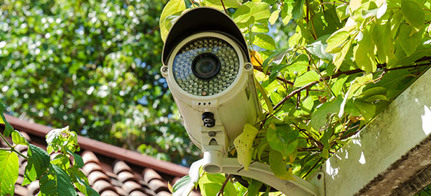 Home Cctv Which