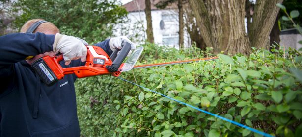 How To Buy The Best Hedge Trimmer Which