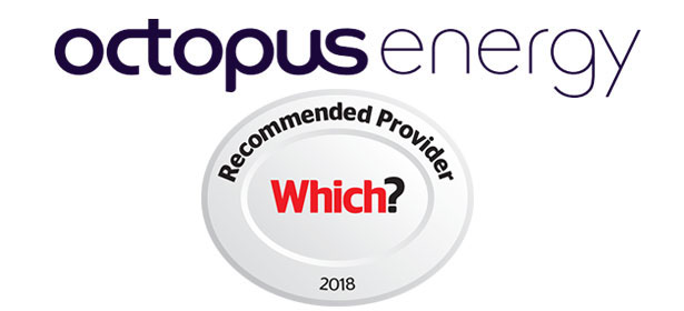 Octopus Energy Review - Which?