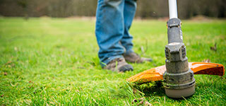 Best strimmer brands